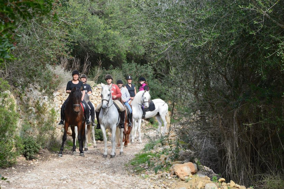 Excursion a caballo Mallorca